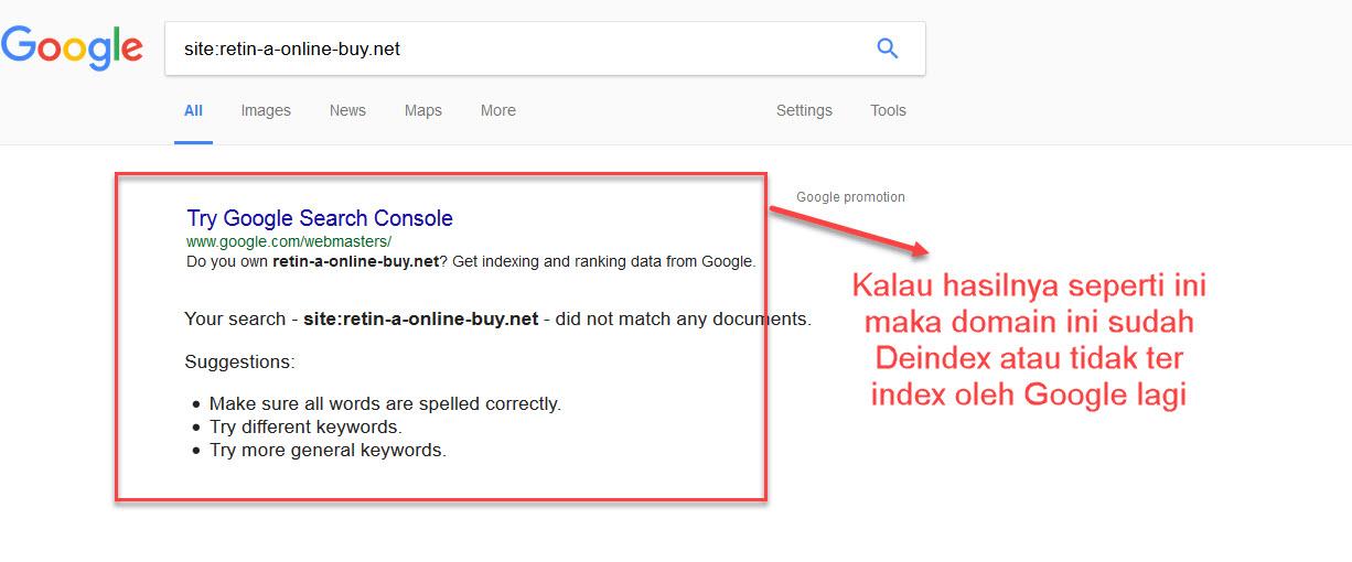 mengecek domain deindex oleh Google