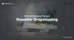 Melihat Peluang Menjadi Reseller Dropshipping