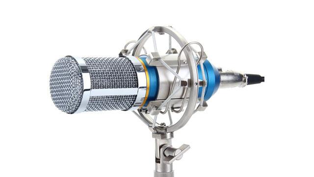 mikrofon Flouren BM-800