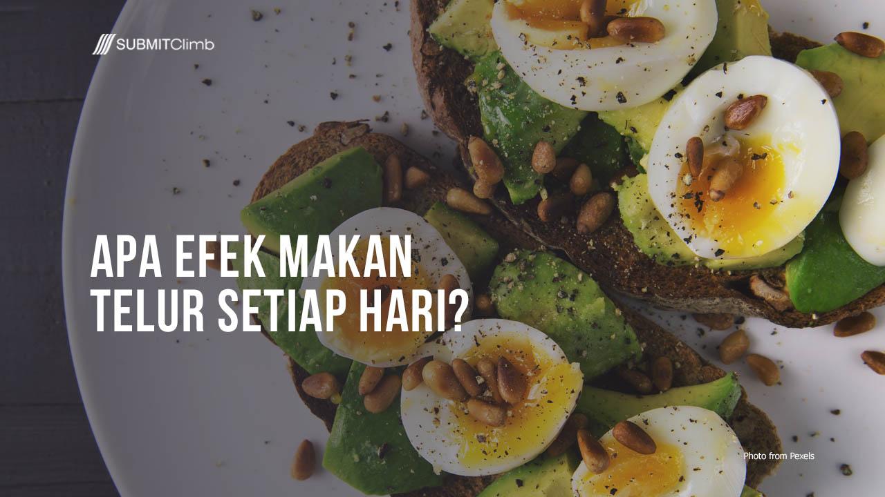 Efek Makan Telur Setiap Hari