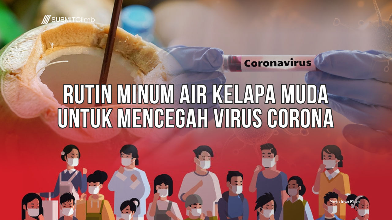 Banyak Minum Air Kelapa Muda Untuk Mencegah Virus Corona