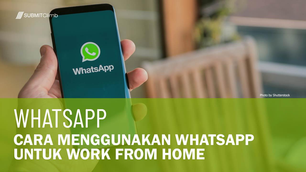 Cara Menggunakan WhatsApp Untuk Work From Home