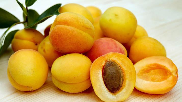 apricot bisa mencegah kehamilan
